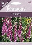 【輸入種子】 Johnsons Seeds Wild flowers Foxglove ワイルドフラワーズ フォックスグローブ ジョンソンズシード