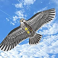 dtemple Strong Eagle Kite with文字列ノベルティおもちゃKites Flyingおもちゃ子供用と大人用