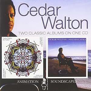 Animation/Soundscapes