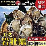 【日本海産】天然岩牡蠣10個セット 殻を割って