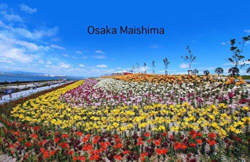 Osaka Maishima (Portuguese Edition)