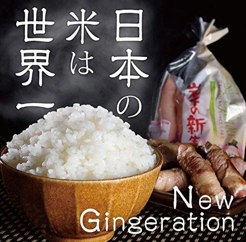 日本の米は世界一/New Gingeration