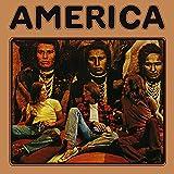 America [12 inch Analog]