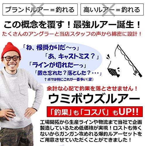 Umibozu(ウミボウズ) ルアーセット シンキングミノー 海釣り シーバス ヒラメ 5色セット ルアーセット (typeA)