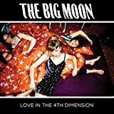 Love in the 4th Dimension [12 inch Analog]