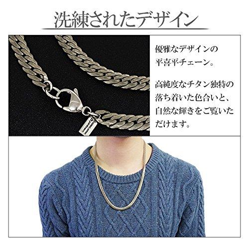 Kihei-cut Pure Titanium Necklace 45cm Chain NK-TC01-45 Japan made Phiten Ltd