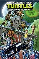 Teenage Mutant Ninja Turtles: New Animated Adventures Volume 4 (TMNT New Animated Adventures)