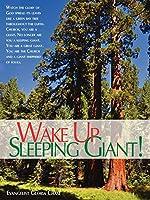 Wake Up Sleeping Giant