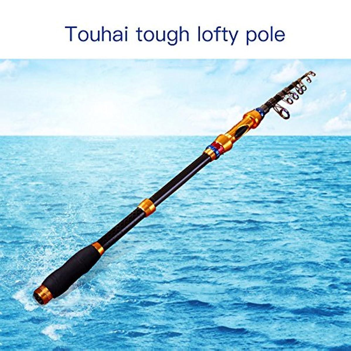 取るに足らない添加物質FYINN 釣り竿 伸縮自在 釣り竿 格納式 釣り竿 海水 旅行 スピニング 釣り竿