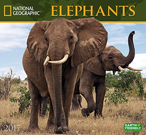 Cal 2017 Elephants National Geographic