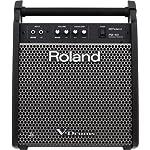 ROLAND PM-100 Personal Monitor パーソナルモニタースピーカー