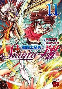 聖闘士星矢セインティア翔 第01-11巻