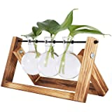 QINGJIANG Creative Hydroponic Glass Plant Transparent Vase Desktop Plant Terrarium Bulb Vase with Wooden Stand Swivel Holder