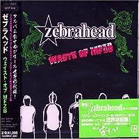 Waste of Mfzb by Zebrahead (2007-12-15)