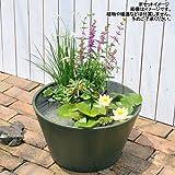 睡蓮鉢 メダカ鉢 金魚鉢 グリーン 直径44cm 高さ25cm 軽量2kg、割れにくい、頑丈な厚み1.2cm