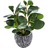 AlphaAcc Mini Potted Artificial Plants Real Looking Plastic Fiddle Leaf Fig Plant with Rustic Black Cement Planter for House