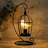"""JHY Design Birdcage Bulb Decorative Lamp Battery Operated 12"""" Tall Cordless Accent Light with Warm White Fairy Lights Bird Bu"""