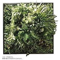 人工観葉植物 アーティフィシャルグリーンアレンジ壁面植裁 □78cm rg-014