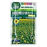 [タネ]緑肥用ひまわりの種 約9平米分×3袋セット[春まき 土壌中の菌根菌を増やす!]