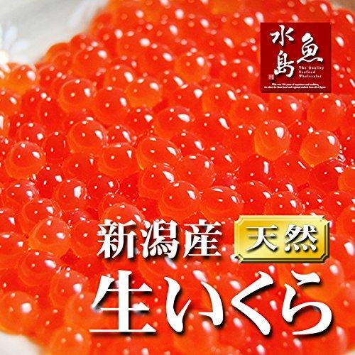 魚水島 新潟産 生いくら 季節限定「とろりやわらか 生イクラ」 500g