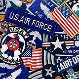 ミリタリーワッペン 刺繍パッチ アメリカ空軍 多目 おまかせ 12枚セット