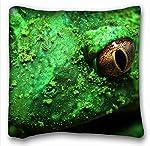 装飾スクエアスロー枕ケース動物カエルSpotted S Grass花びら18インチ* 18インチ2つ側