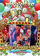 LIVE DVD『Tokyo Doggy's Land -2015-』(通常盤)(在庫あり。)