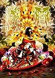 「不易龍煌」二〇一三年三月二十日 NHKホール【初回限定盤】 [DVD]