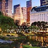 The Seasons of New York 画像