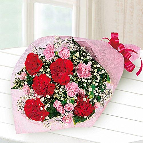 花キューピット 母の日フラワーギフト カーネーションの花束