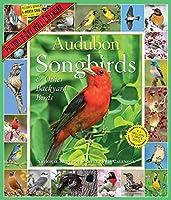 Audubon Songbirds Picture-A-Day Calendar 2018 [12 x 14] [並行輸入品]