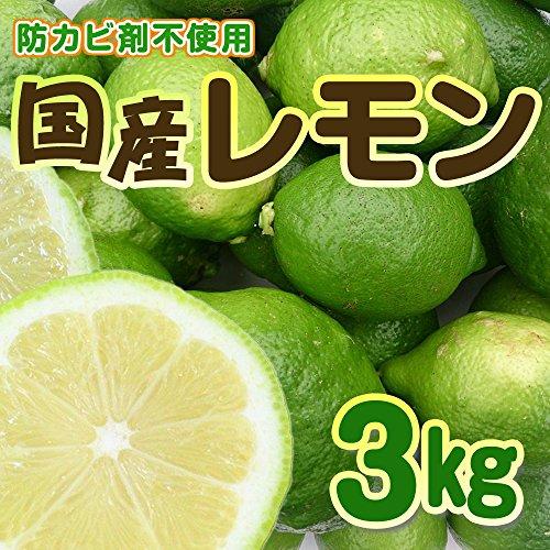 広島県産 レモン 有機肥料栽培 【防腐剤/防かび剤不使用】
