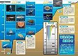 ドラえもん科学ワールド 生物の源・海の不思議 (ビッグ・コロタン) 画像