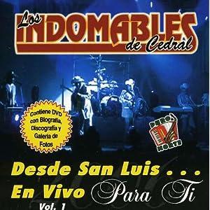 Desde San Luis En Vivo 1 [DVD] [Import]