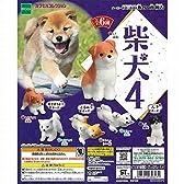 柴犬4 全6種セット