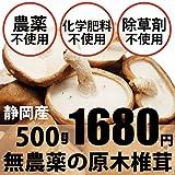 無農薬・無化学肥料の原木生しいたけ 500g
