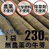 無農薬・無化学肥料 牛蒡 ごぼう 1〜2本