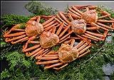 【新潟のカニ屋・リピータ続出!】紅ズワイガニ(カニ) 姿 5ハイ [総量 2kg] 日本海産茹でたてお試しセット