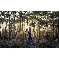 森、朝、日の出、木、花の少女 キャンバスの 写真 ポスター 印刷 旅行 風景 景色 - (105cmx70cm)