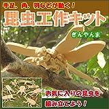 木製昆虫 昆虫工作キット リアル昆虫シリーズ ギンヤンマ ぎんやんま とんぼ トンボ 組立クラフトキット