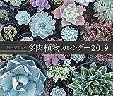 毎日見たい! 多肉植物カレンダー2019