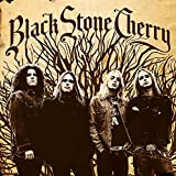 Black Stone Cherry -Clrd- [Analog]