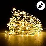 (BARVAX) LEDライト イルミネーションライト USB 10M 100球LED 防水 モバイル USB充電式 DC5V 【電球色 昼白色 多彩カラー 】クリスマス ツリー 飾り 屋外、室内の飾り ハイキング キャンプ ファッションショー (10m, 電球色)