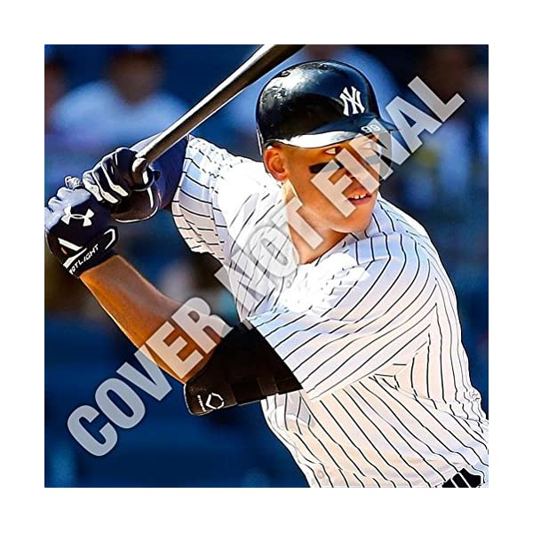New York Yankees Aaron J...の商品画像