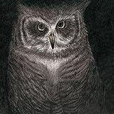 フクロウの声が聞こえる(完全生産限定盤)(音楽/CD)