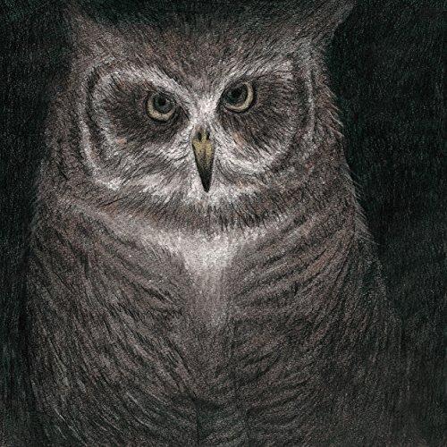 フクロウの声が聞こえる(完全生産限定盤)の詳細を見る