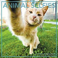 Animal Selfies 2018 Wall Calendar [並行輸入品]