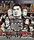 Sleeping Dogs (輸入版:北米)