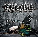 TRAGUS