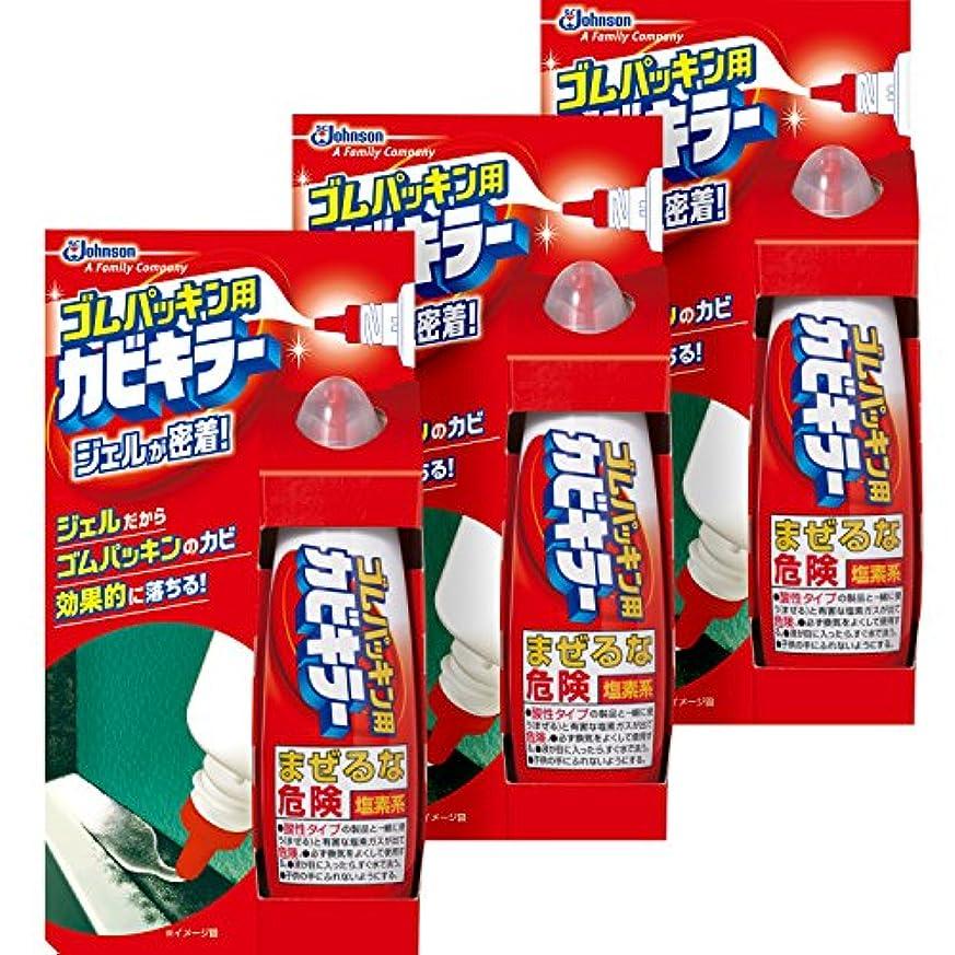 改善する押す引き潮【まとめ買い】カビキラー カビ取り剤 ゴムパッキン用カビキラー ペンタイプ 3本セット 100g×3本